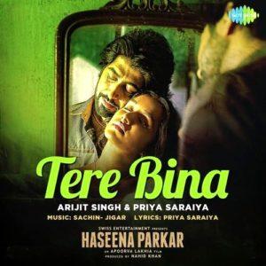 Tere-Bina-(Haseena-Parkar)-Musicfry